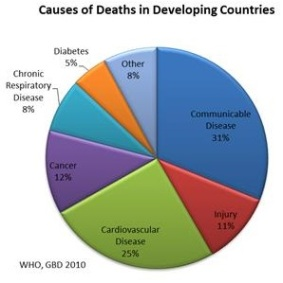 Ncds dev countries