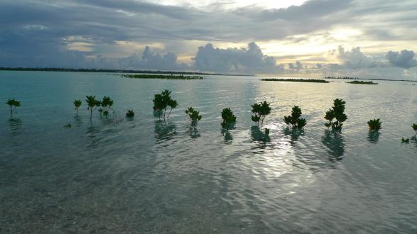 Kiribati image