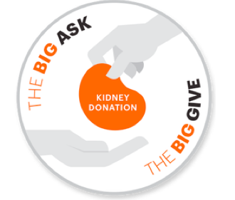 The Big Ask The Big Give - NKF.png